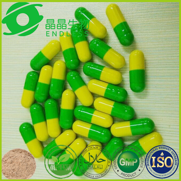 OEM healthcare supplement rhodiola rosea tablets