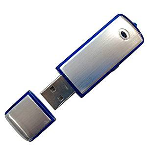 Harulu Audio Voice Spy Pen Recorder 4GB Built-in Memory U-Disk Shaped Digital TF Card