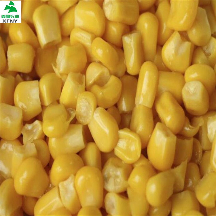 A Grade Golden Yellow Frozen Sweet healthy corn