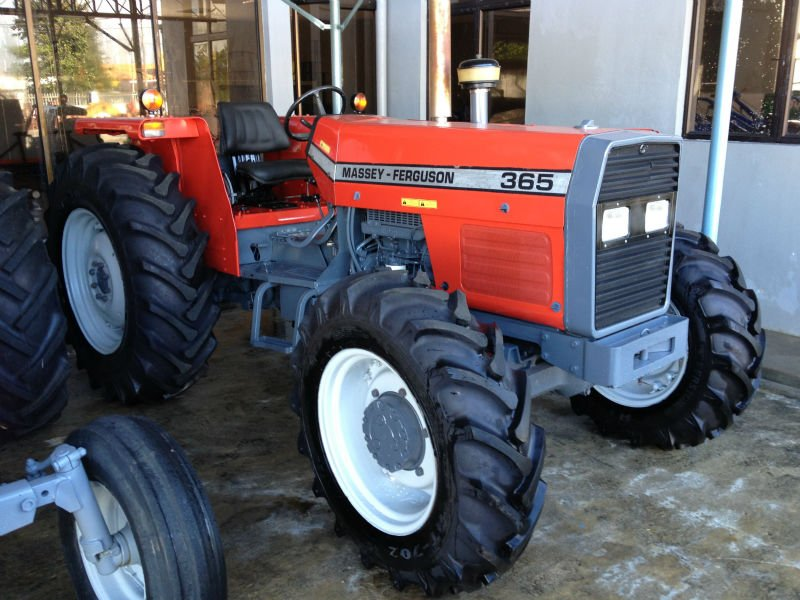 Massey Ferguson 365 - Used Recondition Farm Tractors