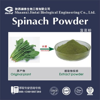 100% Natural Organic Vegetables Spinach Juice Powder