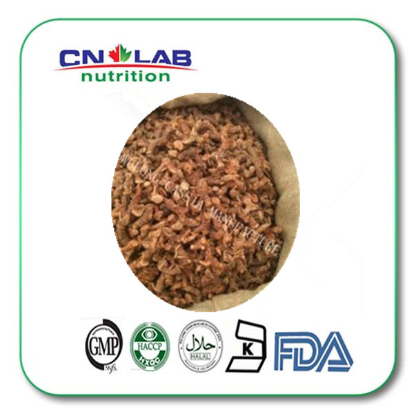 10:1 fresh galangal root extract dried galangal powder