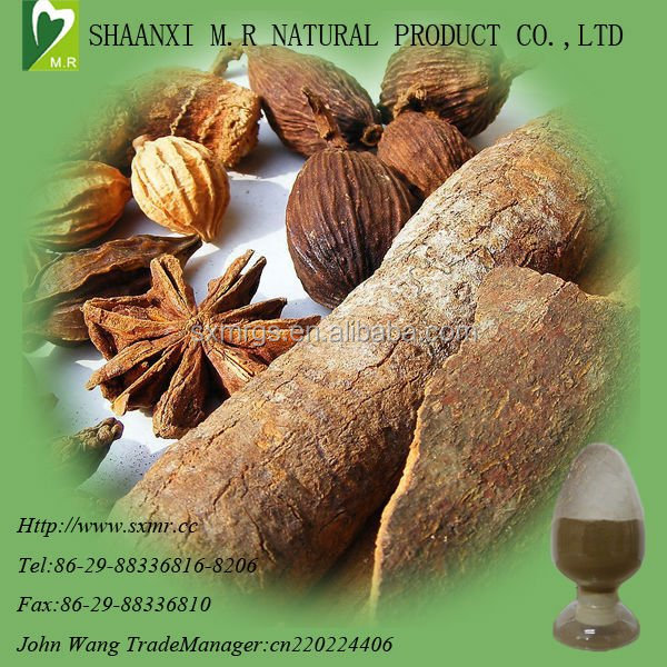Pure natural 10:1 Cinamon bark extract MHCP 95% from GMP factory
