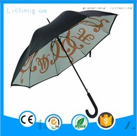 High Quality Auto open and close double layers windproof foldable umbrella