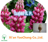 High Quality Lupine Extract, Lupin Extract powder