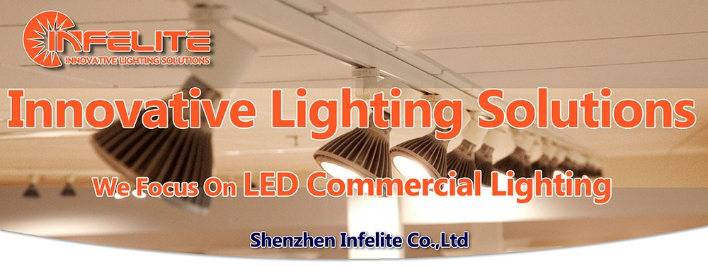 IN-DL104 Cold Forging Aluminum Radiator 5W 7W 10W 15W 20W 25W 30W Round Recessed COB LED Ceiling Downlight Down Lighting