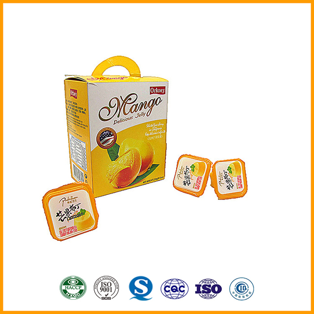 26g delicious mango flavor pudding bulk slime pudding snack