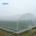 Agricultural vegetable greenhouse from China