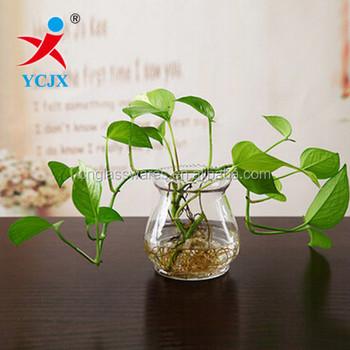 Handmade Round Bottom Glass Jar Vase For Planting Buy Small Round