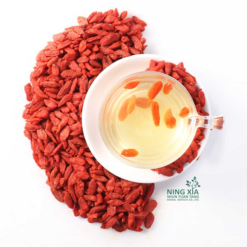new crop goji berries dried fruit - china factory