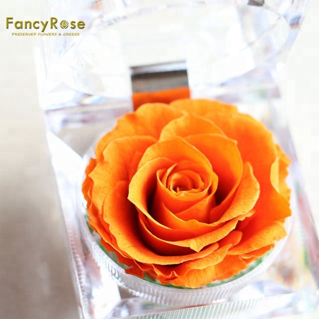 Handmade Preserved Fresh <strong>Flower</strong> Rose with Acrylic Crystal Ring Box