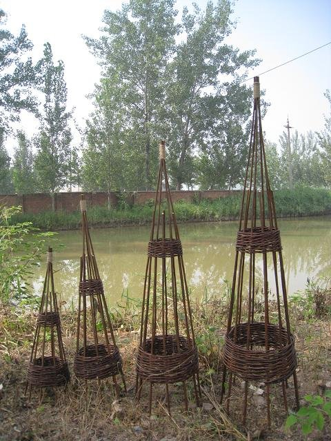 weide garten eisen obelisk kletterpflanzen zaun gitter