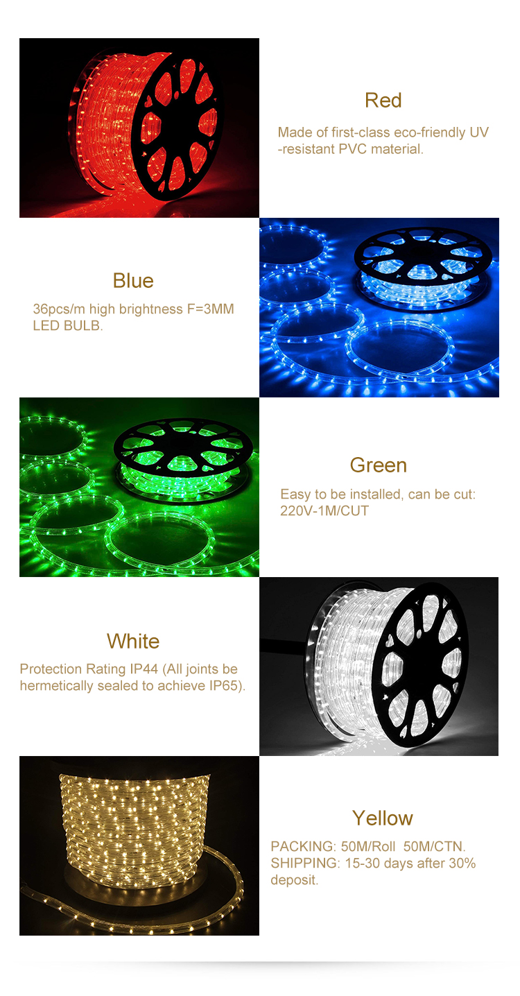 Led Rope Light Party Xmas wedding 110/220V Custom Cut+plug 2 Wire