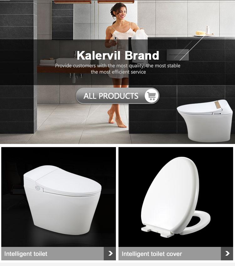चीन आपूर्तिकर्ता सेनेटरी वेयर स्वयं सफाई स्मार्ट bidet पीपी प्लास्टिक शौचालय सीट कवर