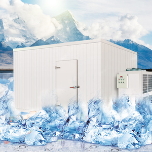 Cheap price Ice storage containers/freezers/cold room for ice cube