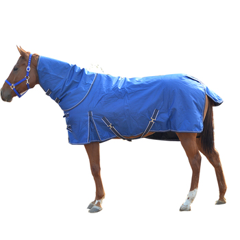 Equestrian Horse cloth for sale