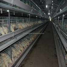 export Kenya galvanized chicken cage/ chicken farm hot sale A Type layer poultry battery cages