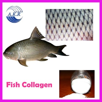 Beauty products fish collagen 100 fish collagen buy for Fish collagen powder