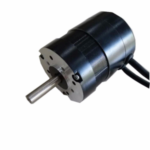 24v 50w 10000rpm brushless dc motor