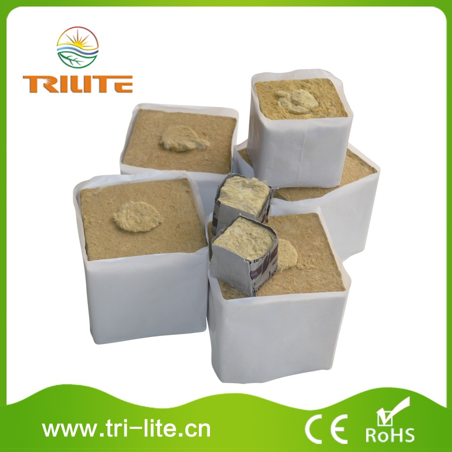 Grow hydroponic Durable Using rock wool cubes