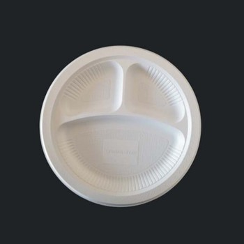 New Biodegradable Disposable Dinner Plate