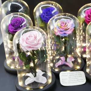 Preserved Rose With Ture Rose Stem in LED light glass dome Cheap Wholesale from Kunming Rainbow