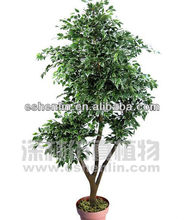 high quality 84-in ficus tree plants artifical
