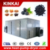 Batch dryer type fruit dehydrator machine price