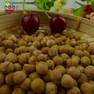 Wholesale low price organic new crop chickpea in russia