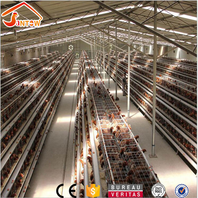 Chicken Use Welded Wire Chicken Layer Cage Enrich Type Broiler Brooding Cage Warehouse In Nigeria Uganda Bangladesh Poultry Farm