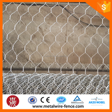 Anping Galvanized Hexagonal Wire Mesh/Galvanized Chicken Wire Mesh/Rabbit Wire