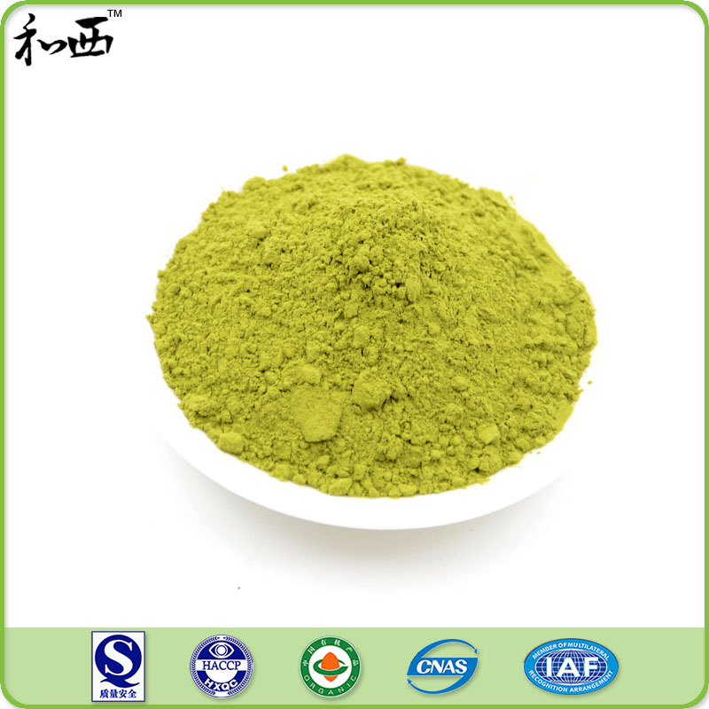 Best Iso Certified Weight Fast Nutritional Matcha Green Tea Powder