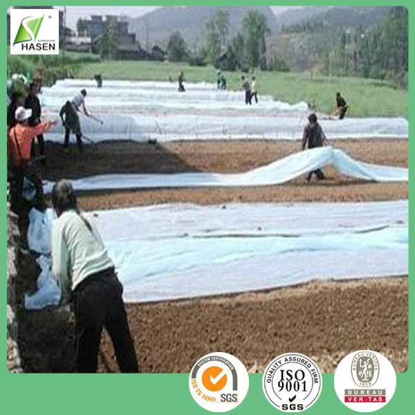 PP non-woven fabric use for agricultural weed control