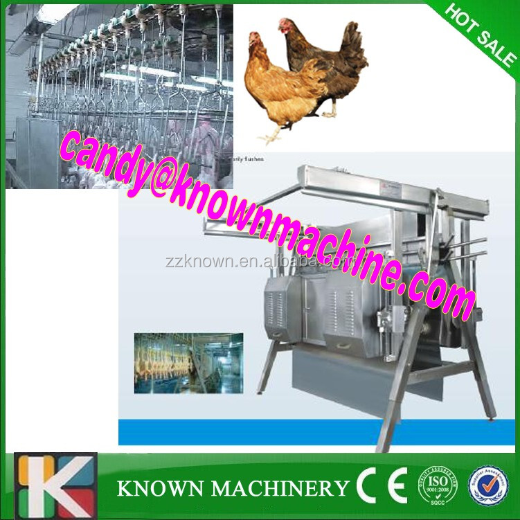 200BPH Chicken Slaughter Poultry Processing Equipment