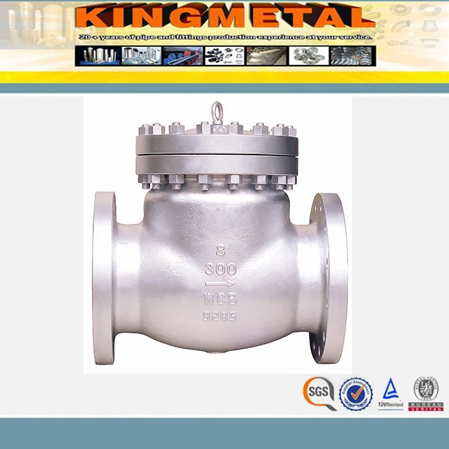 China High Pressure Sealed Check Valve