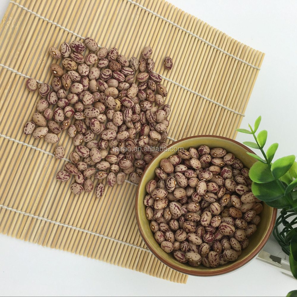phaseolus round pino light speckled kidney beans nutrients