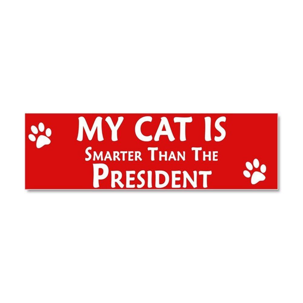Get quotations · cafepress my cat is smarter car magnet 10 x 3 car magnet 10 x