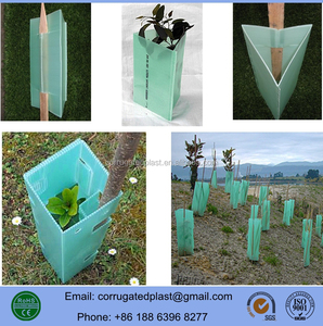 PP Plastic Corflute Tree Guard / Shelter / Wrap