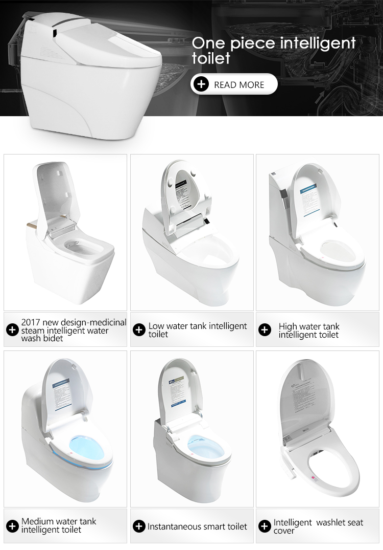 Gizo LZ-0702z Eco Toilet with inside compact Ceramic Toilet