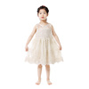 2019 Top selling toddler clothing sleeveless lace girl clothes summer party dress