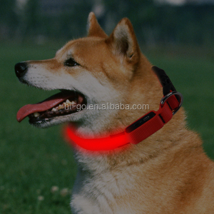 pets accessories good quality hot sell china pet supplies led usb rechargeable flashing dog/ pet collar