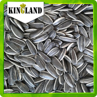 5009 new crop seeds sunflower 240pcs-300pcs