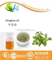 Clear Heat Essential Oil Origanum oil