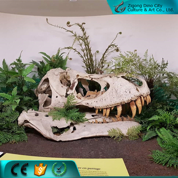 Life Size Artificial Replica Dinosaur Fossils For Sale - Buy Dinosaur  Fossils,Replica Dinosaur Fossils,Fossils Product on Alibaba com