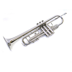 Standard Professional Popular International Musical Instruments Trumpet Piccolo