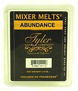 ABUNDANCE Tyler Candles Fragrance Scented Wax Mixer Melts