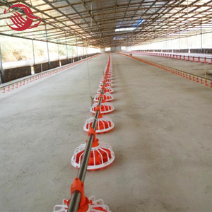 Customized automatic Poultry Chicken House/ Hen Shed Feeding Drinking Equipment For broiler farm