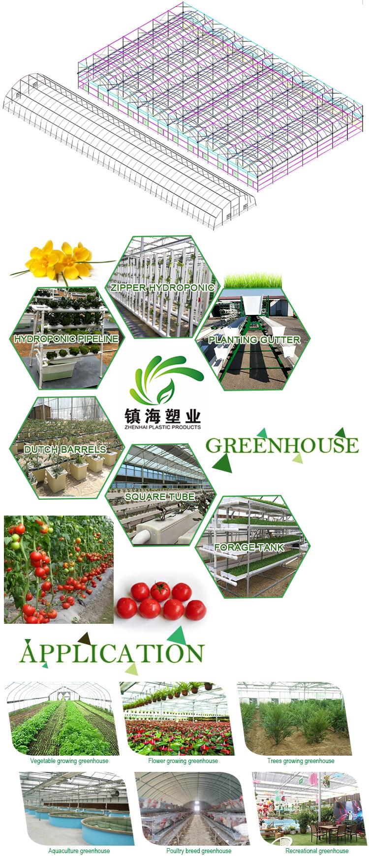 Large Size aquaponics growing commercial PC sheet greenhouse blackout system