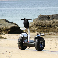 Adult self balancing electric motorcycle 2000W