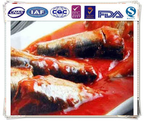 canned mackerel in tomato sauce /fish canned